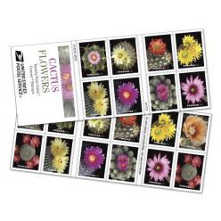 В США выпущены в обращение красочные почтовые марки, на которых показаны цветущие кактусы