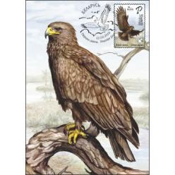  У Білорусі випустили поштову марку «Великий підорлик» із серії «Птах року»