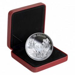 В Канаде отчеканена монета с изображением 10 кленовых листьев