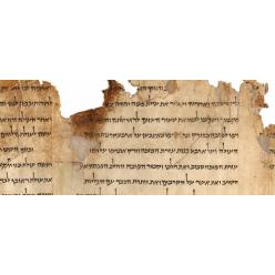 Некоторые свитки Мертвого моря оказались фальшивыми