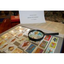 В Покрове открылась выставка, посвященная 100-летию почтовой марки