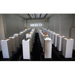 В США любительница селфи повредила экспонаты на 200 тысяч долларов