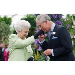 Теперь Чарльз, принц Уэльский, будет размещен на денежных знаках стран Содружества наций