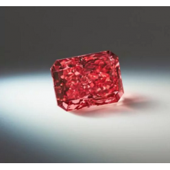 В Нью-Йорке на аукцион выставили удивительный камень