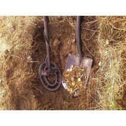 В заповеднике «Хортица» на Херсонщине побывали «черные археологи»
