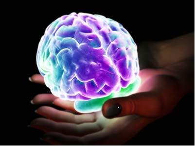 В момент передчуття дія імпульсів на центр задоволення в мозку найсильніша.